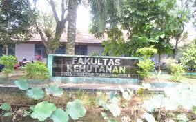 Fakultas Kehutanan Universitas Tanjungpura (Untan)